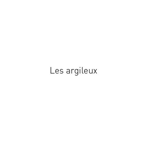 http://www.georges-pacheco.com/files/gimgs/45_les-argileux.jpg