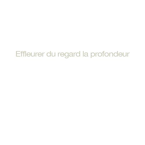 http://www.georges-pacheco.com/files/gimgs/52_effleurer-du-regard.jpg